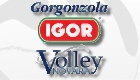 Igor Gorgonzola Volley Novara