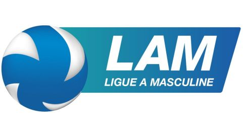 Liga francuska - Ligue A (M)