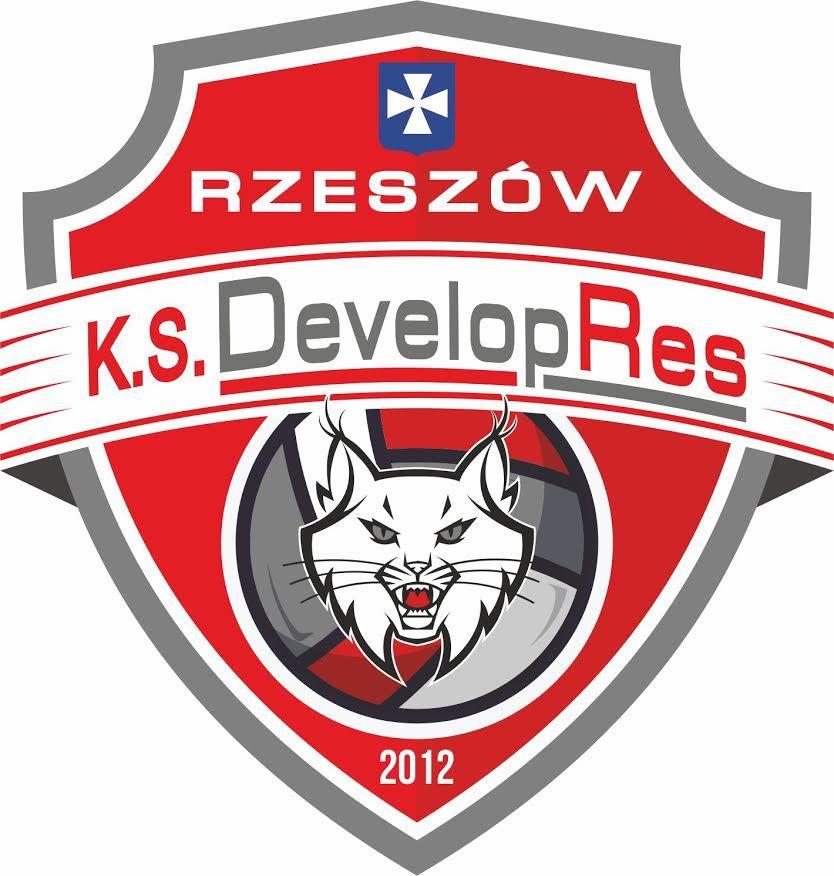 Developres Rzeszów - logo